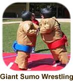 Giant Sumo Wrestling