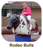 Rodeo Bulls & Surf Simulators